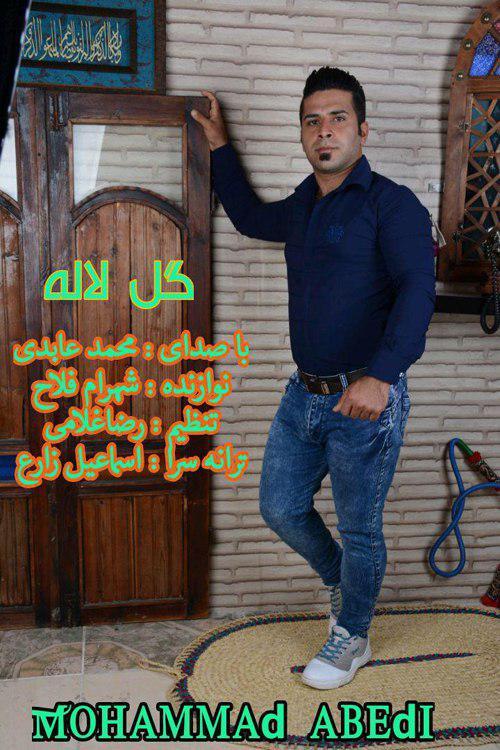 دانلود آهنگ جدید محمد عابدی به نام گل لاله